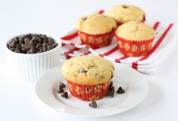 Easy Chocolate Chip Muffin Recipe
