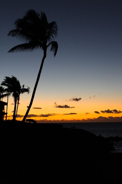 beach-dinner-four-seasons-maui2