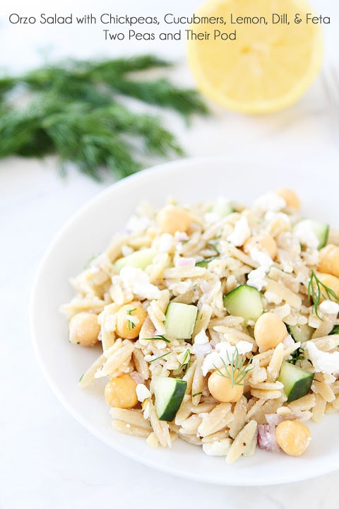Orzo Salad with Chickpeas, Cucumbers, Lemon, Dill, & Feta | http://homemaderecipes.com/cooking-102/healthy-recipes/11-best-salad-recipes-healthy/