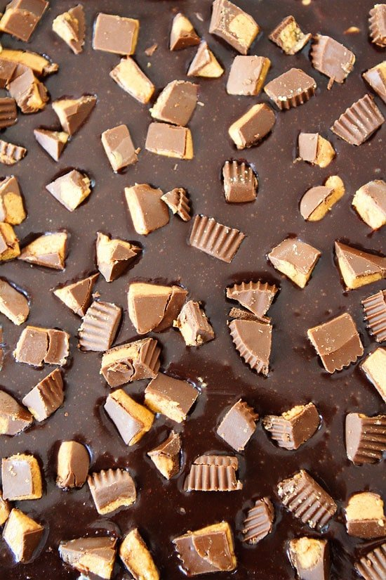 Peanut butter cups sprinkled in chocolate for peanut butter brownies