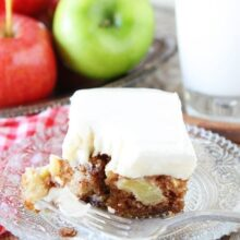 Fresh apple cake made from easy apple cake recipe