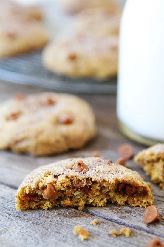 Pumpkin Cinnamon Cookies-the best pumpkin cookie recipe!