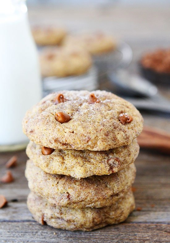 Pumpkin Cookies with cinnamon chips and rolled in cinnamon and sugar. The best fall cookie recipe.