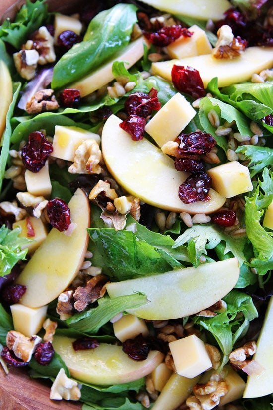 Apple, Gouda, and Farro Salad Recipe