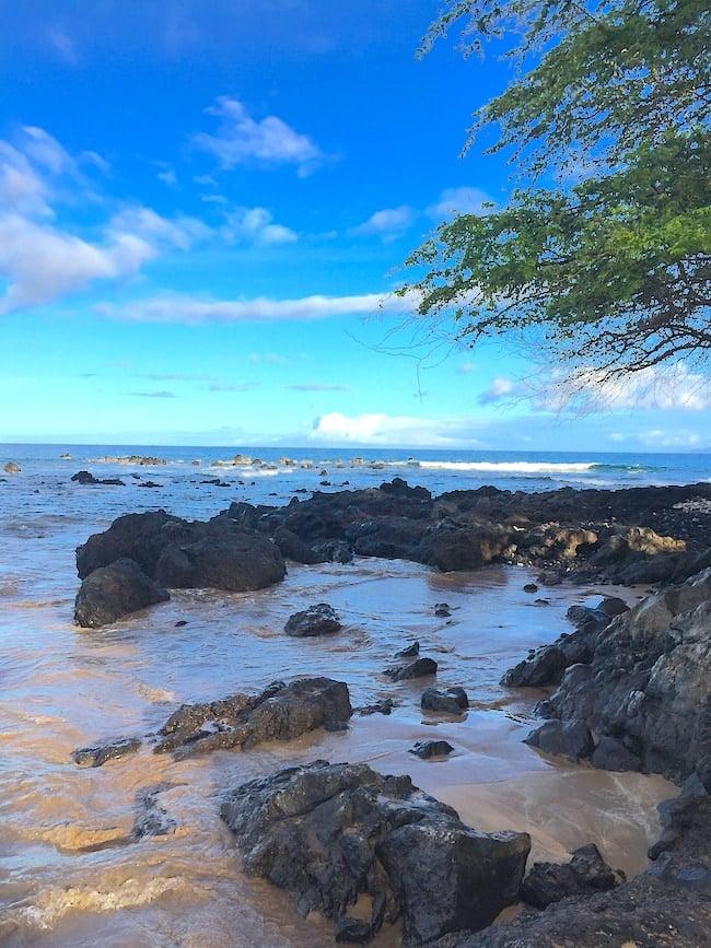 Family Vacation to Maui