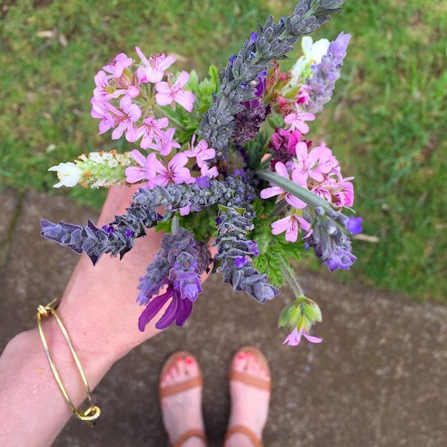 Maui Lavender Farm
