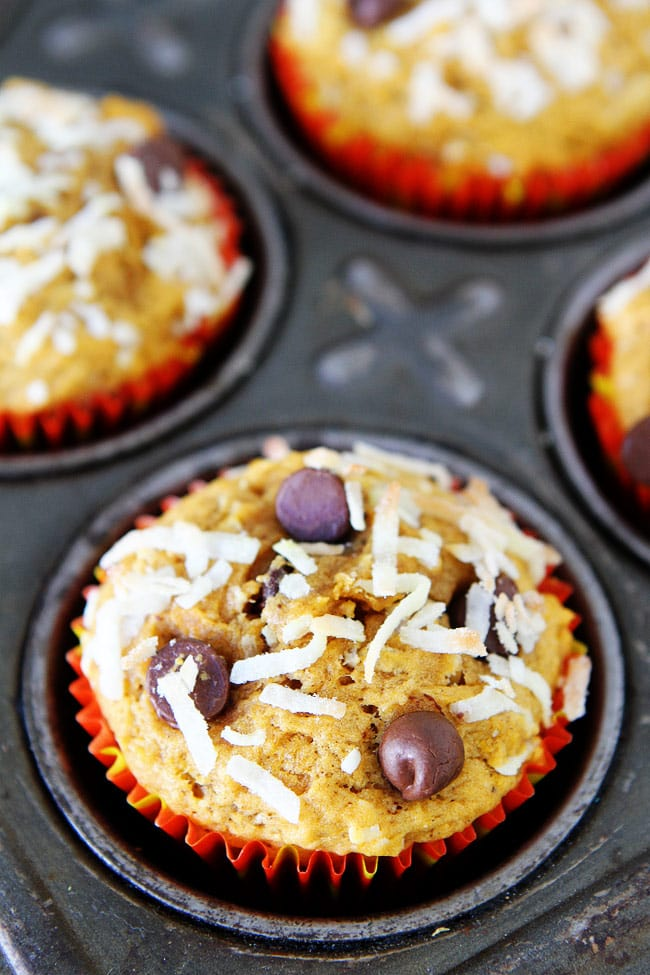 Pumpkin Coconut Chocolate Chip Muffins Recipe