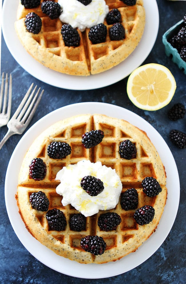 Easy Lemon Poppy Seed Waffles with lemon whipped cream and fresh blackberries make a wonderful breakfast or brunch.