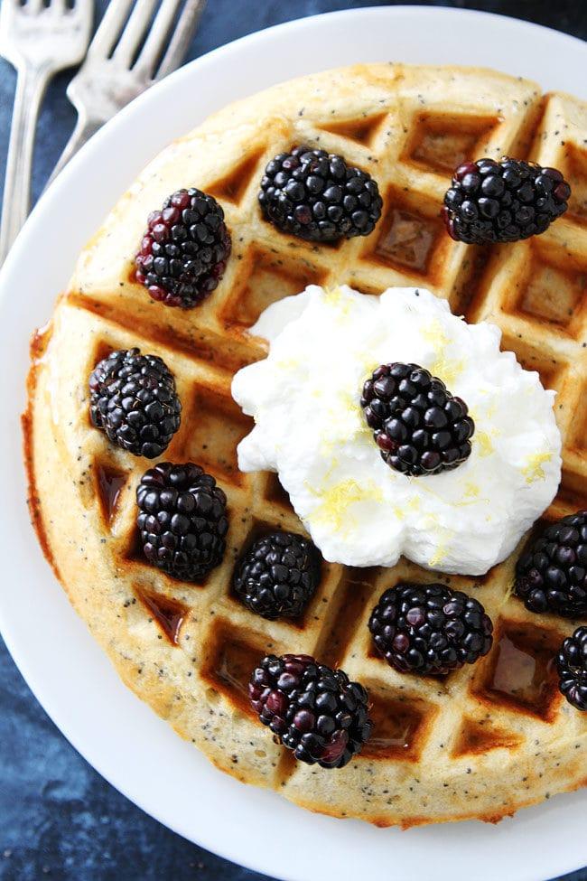 Lemon Poppy Seed Waffles with lemon whipped cream and fresh blackberries are a family favorite breakfast!