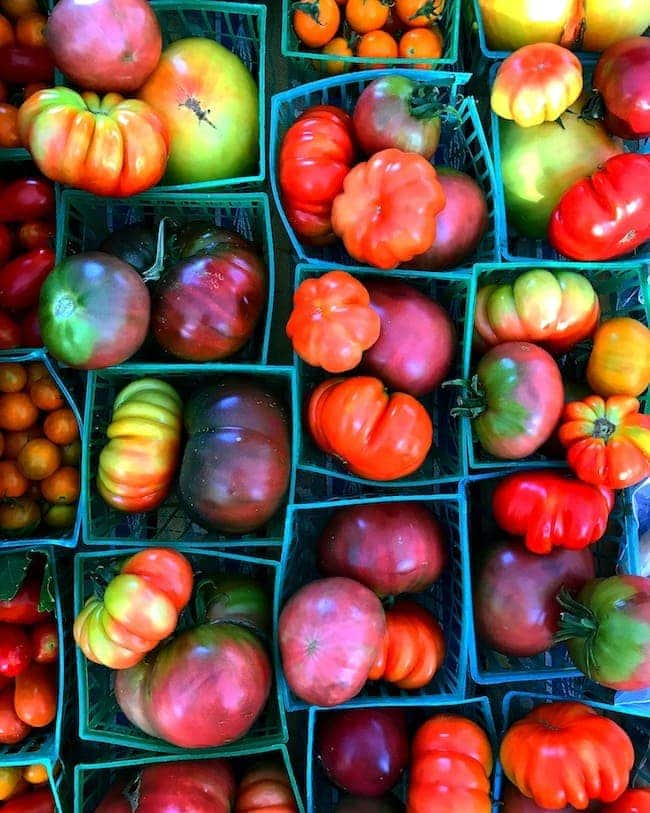 Best Tomato Recipes for End of Summer Tomatoes