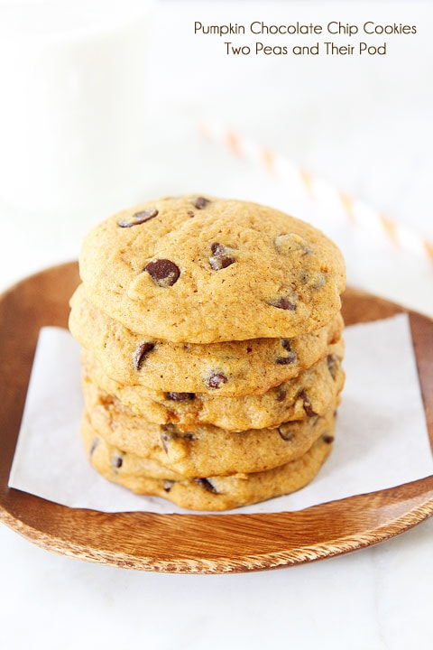 Pumpkin Chocolate Chip Cookie Recipes