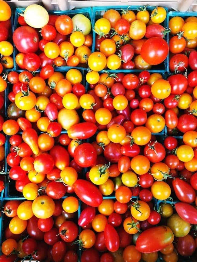 Best Fresh Tomato Recipes